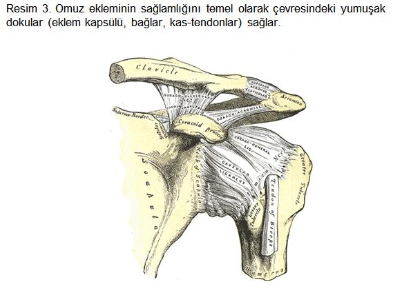 dirsek-cerrahisi