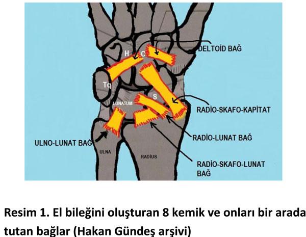 el-bilek-a-r-s-instabilite-1